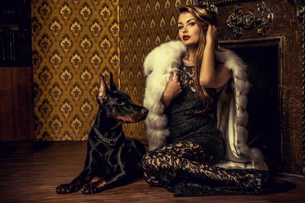 blog-600x400-perro-rico